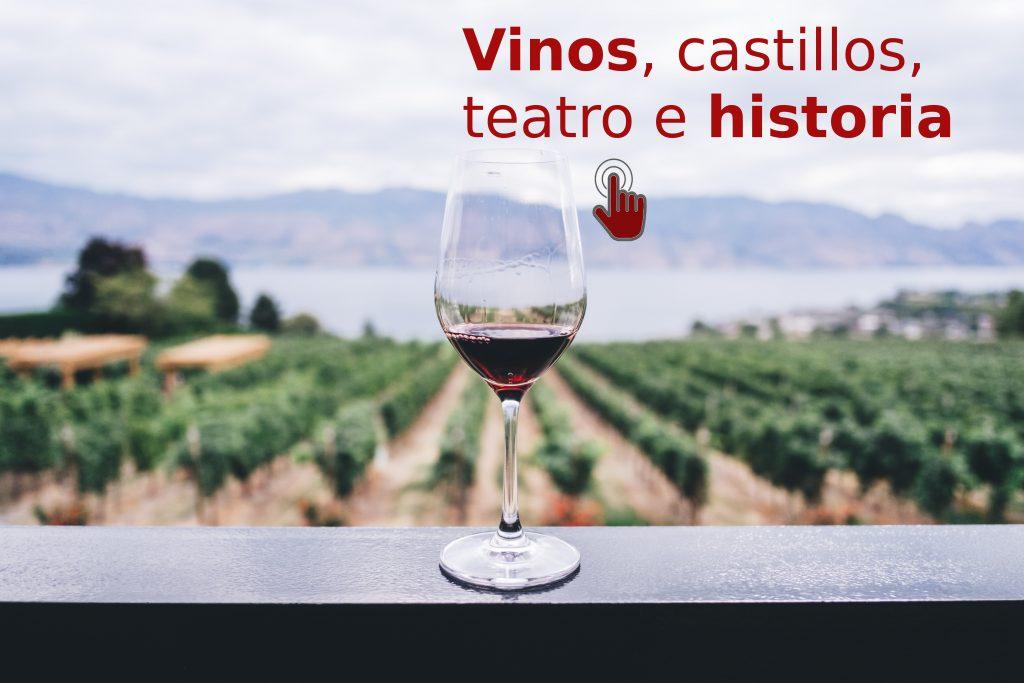 tours en valladolid provincia vinos