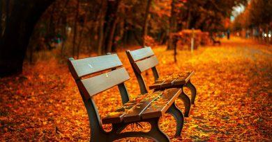 paseos de otoño valladolid 2020 rutas