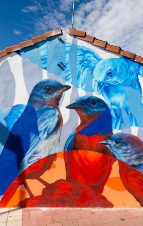 arte urbano en valladolid mural