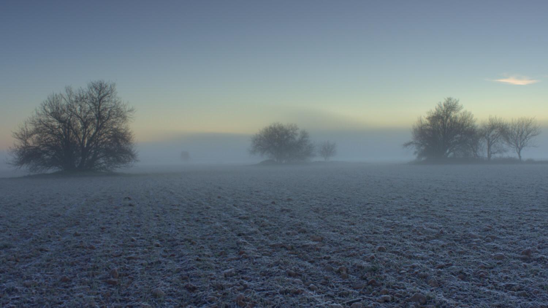 niebla en Valladolid cencellada